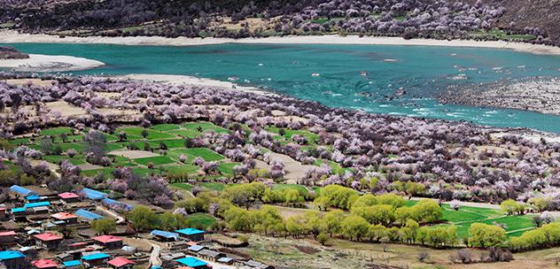 西藏旅游团